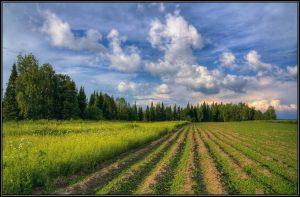 Рекультивации земель