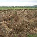 Способы восстановления плодородия загрязненных почв