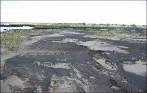 Рекультивация нефтезагрязненных грунтов