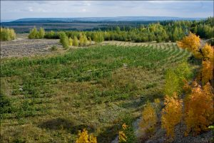 Мероприятие, направленное на восстановление свойств земли называется...