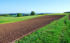 Мелиорация рекультивация и консервация земель