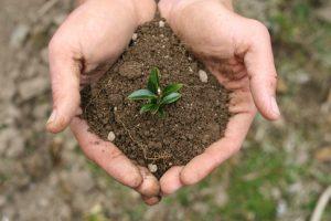Защита почвы от загрязнения