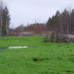 Рекультивация земель на месте карьеров