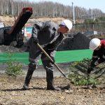 Мероприятие по восстановлению почвы