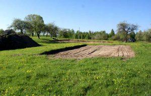 Восстановление плодородия почвы