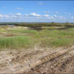 Рекультивация сельскохозяйственных земель: общие данные