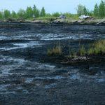 Рекультивация нефтезагрязненных земель