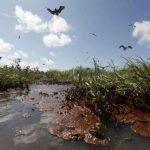 Рекультивация земель и ее виды