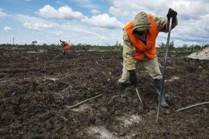Рекультивации загрязненных земель