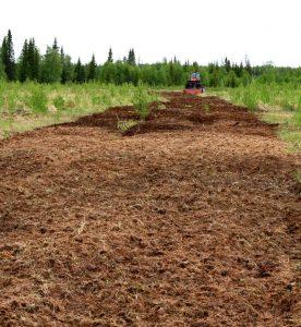 Рекультивация пахотных земель: что она должна дать