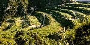 Восстановление нарушенных земель