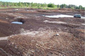 Способы рекультивации почвы