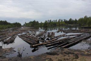 Рекультивация нарушенных земель в нефтегазовой отрасли