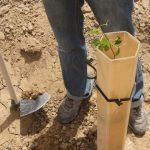 Анализ металлов в почве