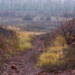 Рекультивация земель сельскохозяйственного назначения