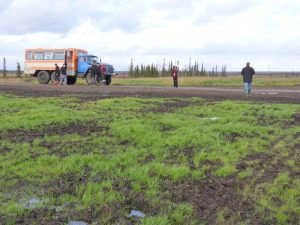 Рекультивация земель проводится в обязательном порядке