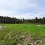 Рекультивации земель в России
