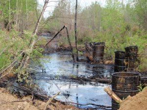 Рекультивация загрязненных земель: что нужно знать