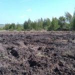 Рекультивация земель при строительстве