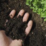 Защита почв от эрозии и восстановление нарушенных земель