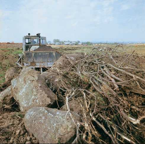 Виды рекультивации нарушенных земель: важнейшие особенности