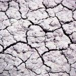 Мероприятия, направленные на восстановление нарушенной земли