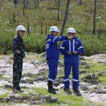 Рекультивация земель лесного фонда