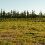 Рекультивация нарушенных земель горными работами