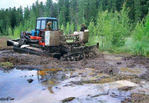 Биологическая рекультивация земель: главное