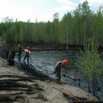 Агрохимический анализ почвы: рекомендации