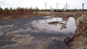 Рекультивация нефтезагрязненных земель различными методами