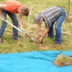 Работы по восстановлению почвы