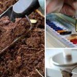 Анализ плодородия почв