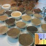 Анализ песка в лаборатории