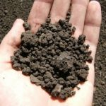Анализ грунта на радиацию и не только: стоимость