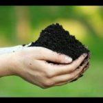 Как сделать анализ земли