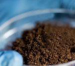 Микологический анализ почвы